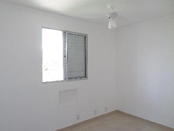 Alugar Apartamento / Duplex em Araçatuba apenas R$ 800,00 - Foto 7