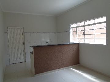 Alugar Casa / Padrão em Araçatuba apenas R$ 1.000,00 - Foto 10