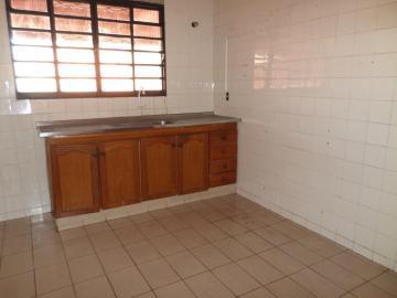 Alugar Casa / Residencial em Araçatuba apenas R$ 1.000,00 - Foto 15