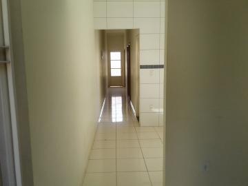 Alugar Casa / Padrão em Araçatuba apenas R$ 600,00 - Foto 4