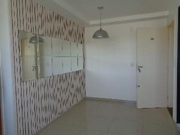 Alugar Apartamento / Padrão em Araçatuba apenas R$ 1.050,00 - Foto 4