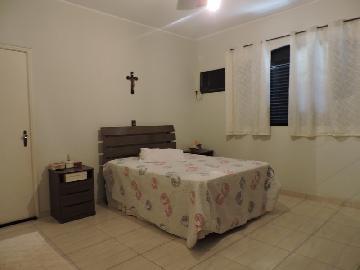 Comprar Casa / Residencial em Araçatuba apenas R$ 350.000,00 - Foto 7
