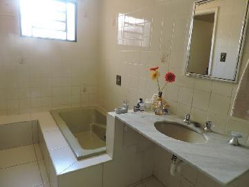 Comprar Casa / Residencial em Araçatuba apenas R$ 350.000,00 - Foto 8