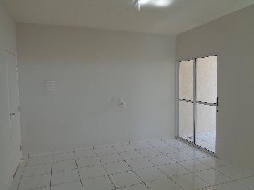 Alugar Apartamento / Padrão em Araçatuba apenas R$ 750,00 - Foto 2
