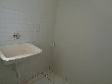 Alugar Apartamento / Padrão em Araçatuba apenas R$ 750,00 - Foto 5