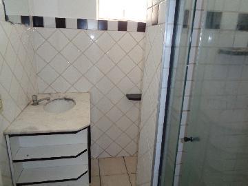 Alugar Apartamento / Padrão em Araçatuba R$ 1.000,00 - Foto 5