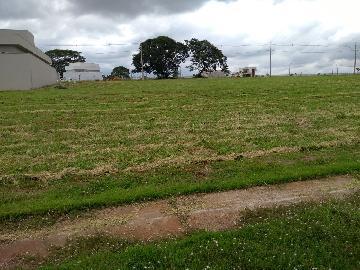 Comprar Terreno / Condomínio em Araçatuba apenas R$ 280.000,00 - Foto 2