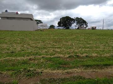 Comprar Terreno / Condomínio em Araçatuba apenas R$ 280.000,00 - Foto 3