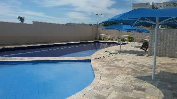 Comprar Apartamento / Padrão em Araçatuba apenas R$ 300.000,00 - Foto 33