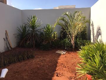 Comprar Casa / Residencial em Araçatuba apenas R$ 470.000,00 - Foto 25