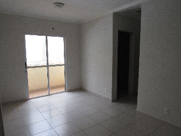 Alugar Apartamento / Padrão em Araçatuba R$ 650,00 - Foto 1