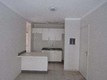 Alugar Apartamento / Padrão em Araçatuba R$ 650,00 - Foto 12
