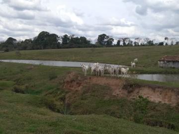 Aracatuba Zona Rural Rural Venda R$1.173.000,00  Area do terreno 333960.00m2