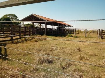 Comprar Rural / Fazenda em Guaraçaí - Foto 2