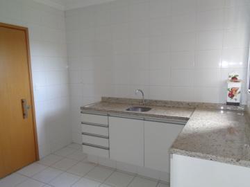 Alugar Apartamento / Padrão em Araçatuba apenas R$ 1.600,00 - Foto 3