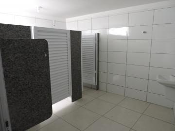 Alugar Comercial / Barracão em Araçatuba R$ 3.500,00 - Foto 4