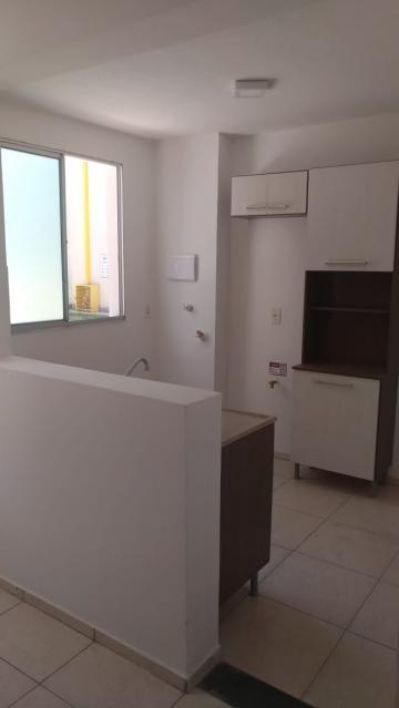 Alugar Apartamento / Padrão em Araçatuba R$ 550,00 - Foto 5