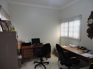 Alugar Casa / Sobrado em Araçatuba apenas R$ 3.000,00 - Foto 3