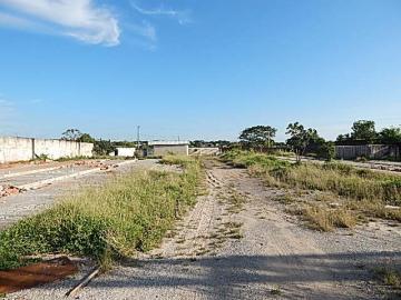 Alugar Terreno / Área em Araçatuba apenas R$ 4.000,00 - Foto 3