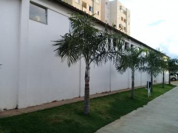 Alugar Apartamento / Padrão em Araçatuba apenas R$ 950,00 - Foto 16