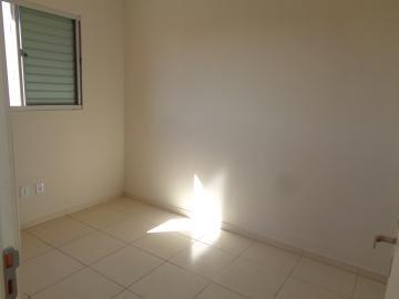 Alugar Apartamento / Padrão em Araçatuba apenas R$ 700,00 - Foto 9
