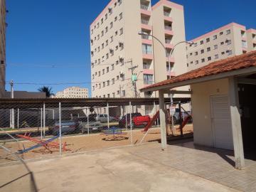 Alugar Apartamento / Padrão em Araçatuba apenas R$ 700,00 - Foto 14