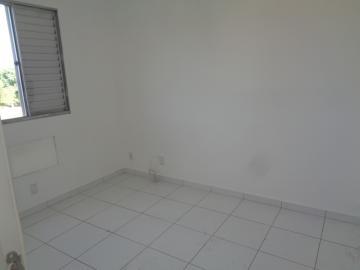 Alugar Apartamento / Padrão em Araçatuba apenas R$ 500,00 - Foto 6