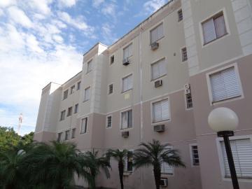 Alugar Apartamento / Padrão em Araçatuba apenas R$ 500,00 - Foto 14
