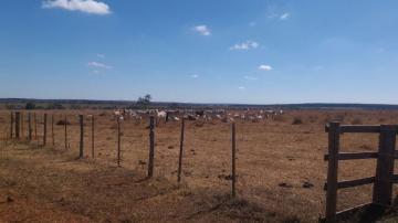 Comprar Rural / Fazenda em Selvíria - Foto 5