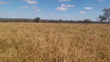 Comprar Rural / Fazenda em Selvíria - Foto 10