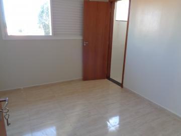Alugar Casa / Residencial em Araçatuba apenas R$ 1.650,00 - Foto 7
