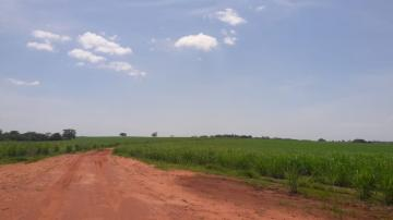 Comprar Rural / Fazenda em Araçatuba - Foto 3