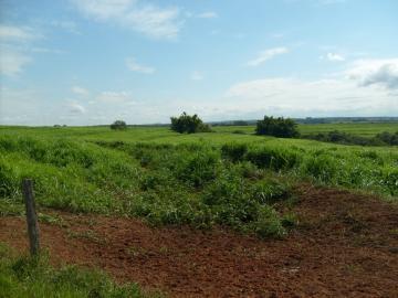 Comprar Rural / Fazenda em Assis - Foto 5