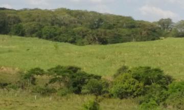 Comprar Rural / Fazenda em araçatuba - Foto 8
