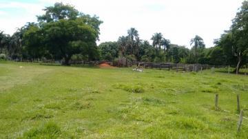 Comprar Rural / Fazenda em Três Lagoas - Foto 2