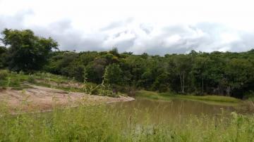 Comprar Rural / Fazenda em Três Lagoas - Foto 5