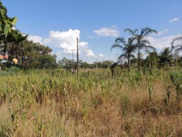 Comprar Terreno / Padrão em Buritama apenas R$ 100.000,00 - Foto 6