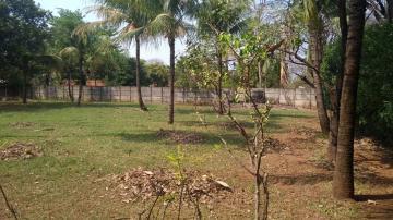 Comprar Rural / Chácara em Araçatuba apenas R$ 750.000,00 - Foto 10