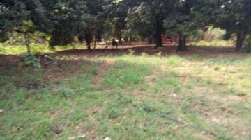 Comprar Rural / Chácara em Araçatuba apenas R$ 750.000,00 - Foto 18