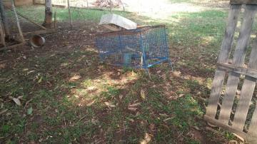 Comprar Rural / Chácara em Araçatuba apenas R$ 750.000,00 - Foto 20
