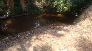 Comprar Rural / Sítio em Coroados apenas R$ 930.000,00 - Foto 14