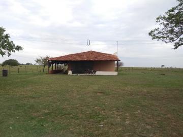 Comprar Rural / Sítio em Coroados apenas R$ 930.000,00 - Foto 1