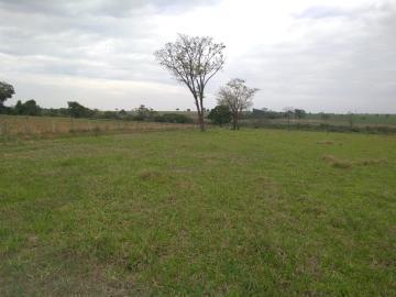 Comprar Rural / Sítio em Coroados apenas R$ 930.000,00 - Foto 31