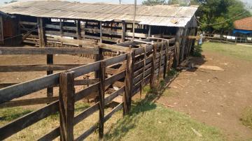 Comprar Rural / Sítio em Coroados apenas R$ 930.000,00 - Foto 9