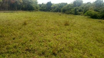 Comprar Rural / Sítio em Coroados apenas R$ 930.000,00 - Foto 22