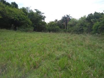 Comprar Rural / Sítio em Coroados apenas R$ 930.000,00 - Foto 26