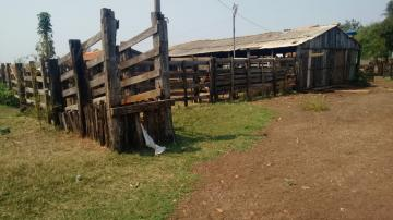 Comprar Rural / Sítio em Coroados apenas R$ 930.000,00 - Foto 8