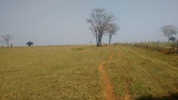Comprar Rural / Sítio em Coroados apenas R$ 930.000,00 - Foto 33