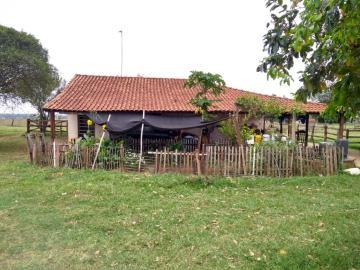 Comprar Rural / Sítio em Coroados apenas R$ 930.000,00 - Foto 4