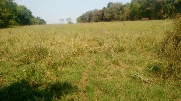 Comprar Rural / Sítio em Coroados apenas R$ 930.000,00 - Foto 37